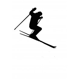 Skier Weather Vane