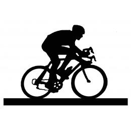 Bicycle Weather Vane